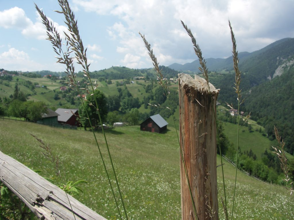 Eco tourism. Blue sky, green hills & mountain village view with wild grass & wooden fence in the foreground